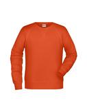 Herren-Sweatshirt-aus-Bio-Baumwolle